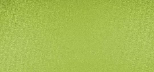 Allgera uni green – 230×3718