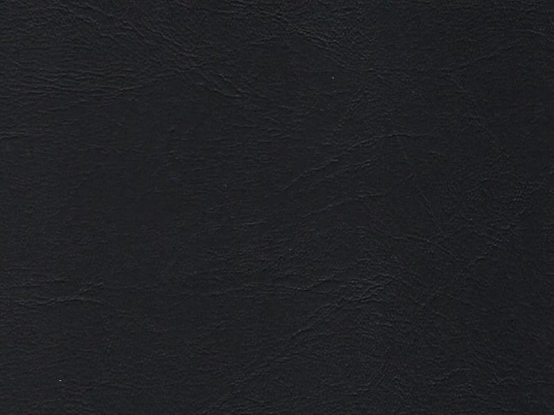 EH x Pisa-schwarz